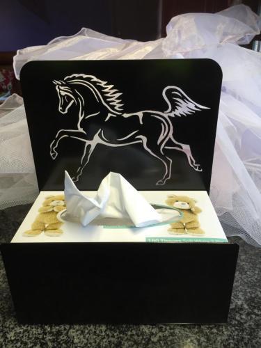 TISSUE BOX HOLDER (1)